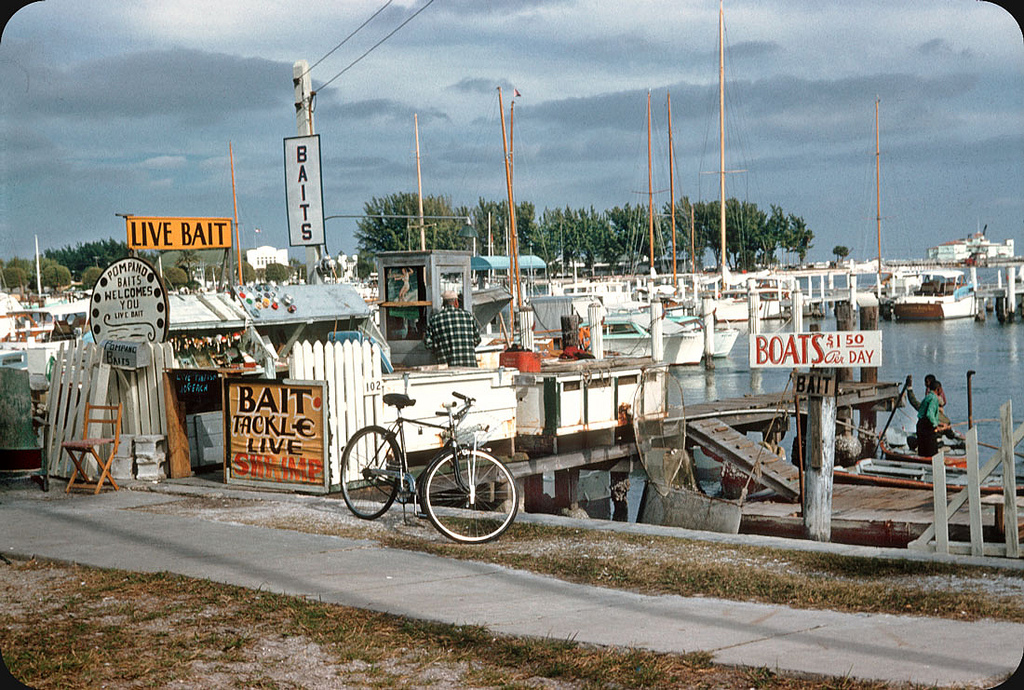 Beautiful Life of Florida in the 1950s (36).jpg