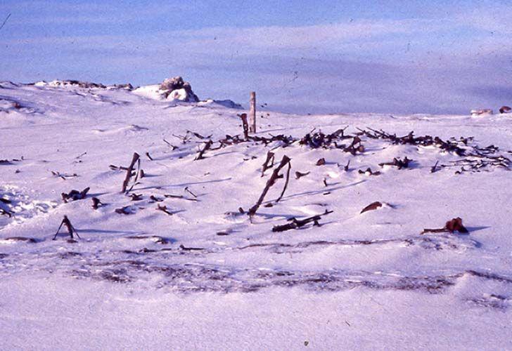 guerra-de-malvinas-1982-211890.jpg