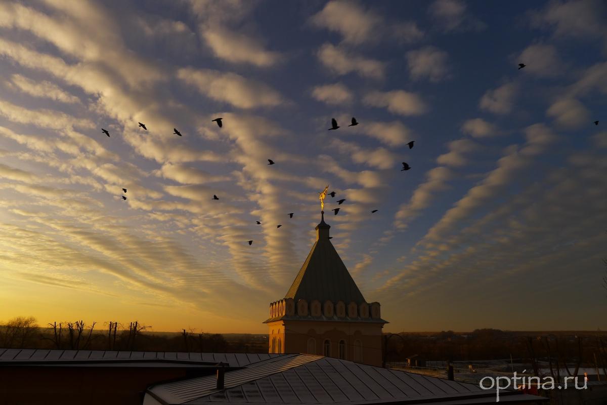 Да радуется днесь небо свыше, и облацы веселие да кропят...