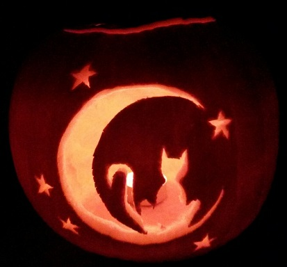Cat pumpkin 2014