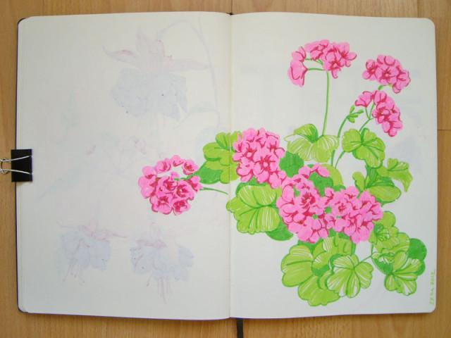 цветы фломастером