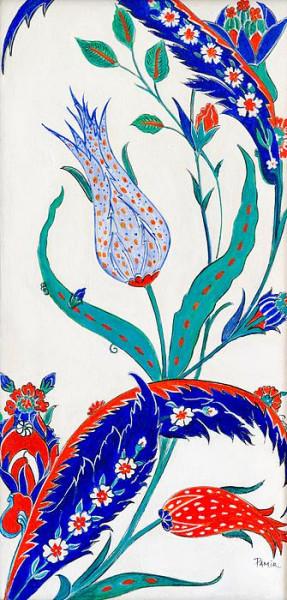 blue-and-orange-tulip-pamir-thompson