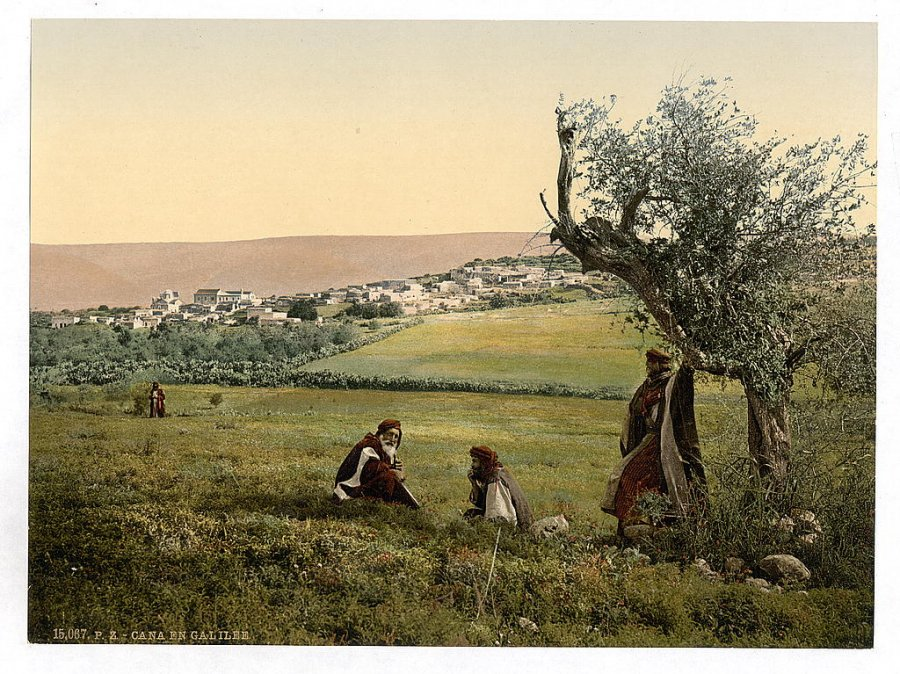 a-relaxing-afternoon-in-the-fields-by-cana-of-galilee