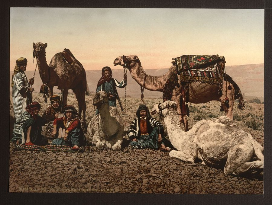 camels-riders-halt-in-the-desert