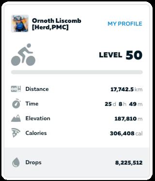 Zwift rider profile page statistics