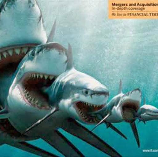 megalodon_monster_sharks_still_alive_