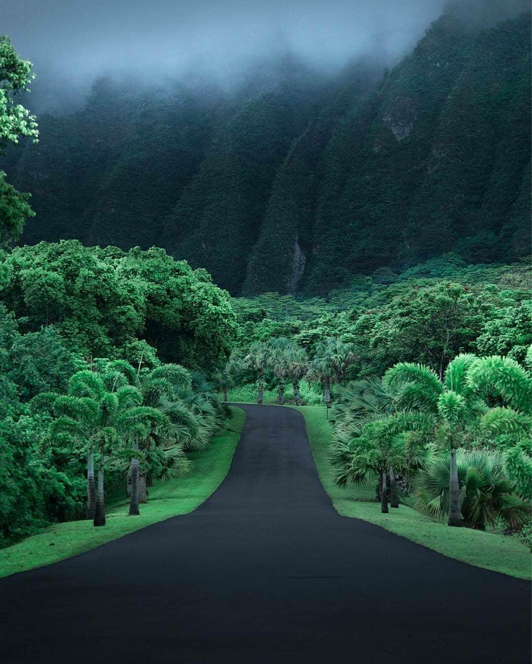 Это - дорога на Гаваях.