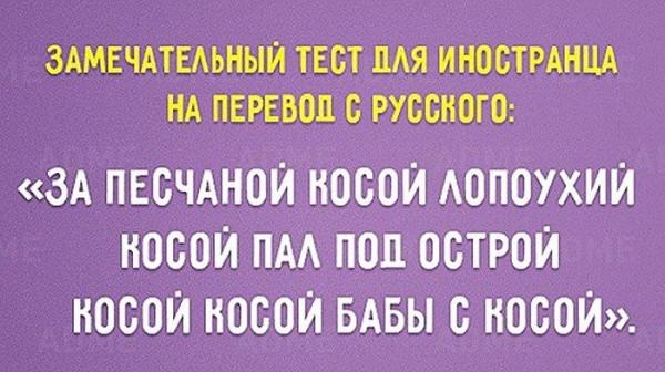 1459136_600.jpg