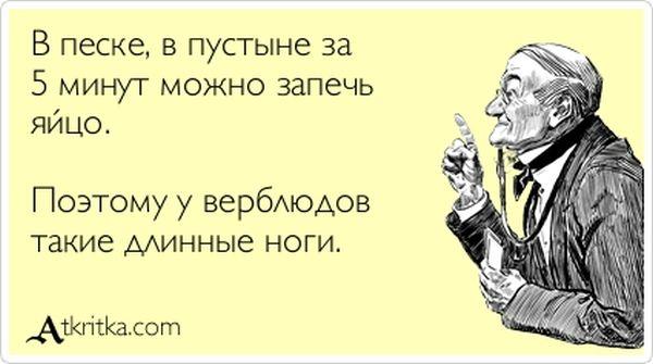 1357632033_atrytki-51