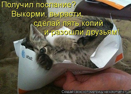 DSC_3654_750x500