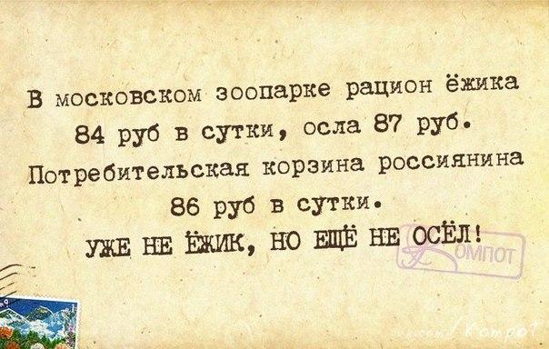 1420659807_frazki-16