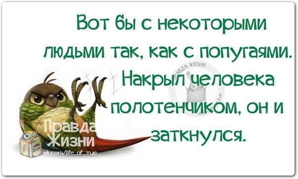 1420659819_frazki-13