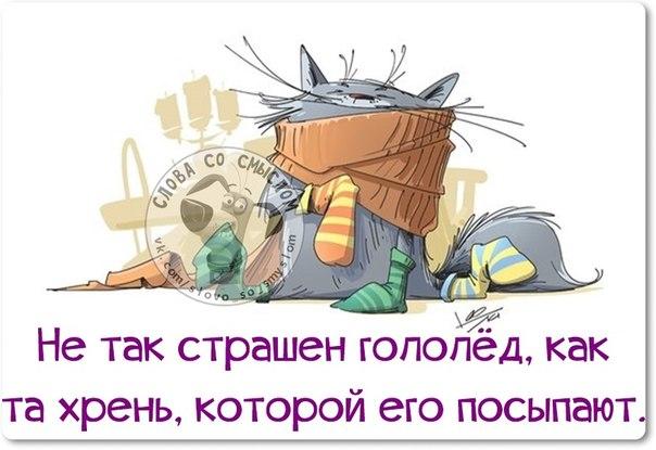 1421004391_frazki-20