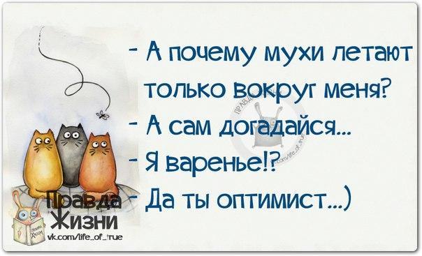 1421004475_frazki-22