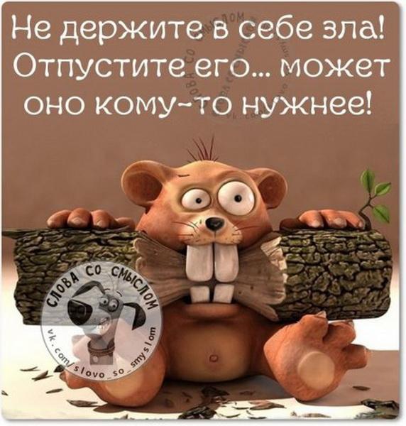 1447569682_1447431822_5sz5e76pv9s_novyy-razmer