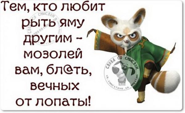 1447569699_1447431827_j8bptgkvl24_novyy-razmer