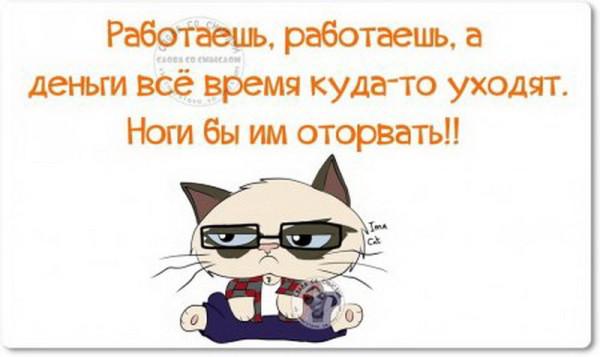 1447569703_1447431903_uo0h8qkrdfa_novyy-razmer