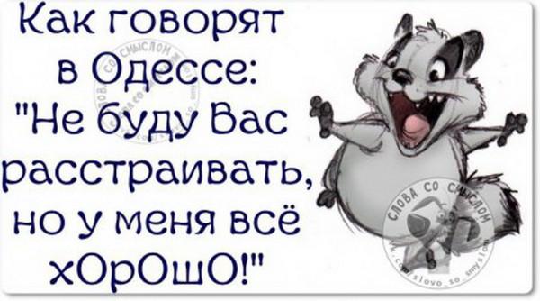 1447569734_1447431891_5rcjiztmtdg_novyy-razmer