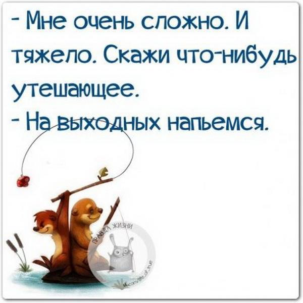 1447569742_1447431863_zg9ctz7qryw_novyy-razmer