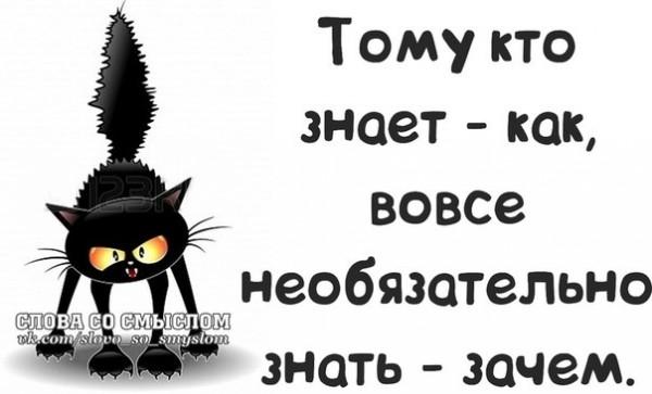 1390850013_frazochki-7
