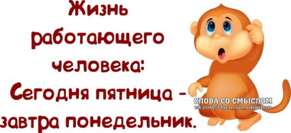 1390850031_frazochki-19