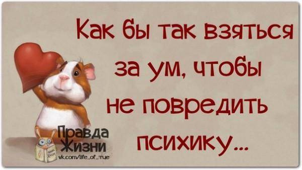 1390850048_frazochki-13