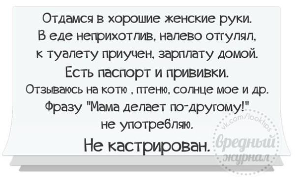 1390850063_frazochki-2