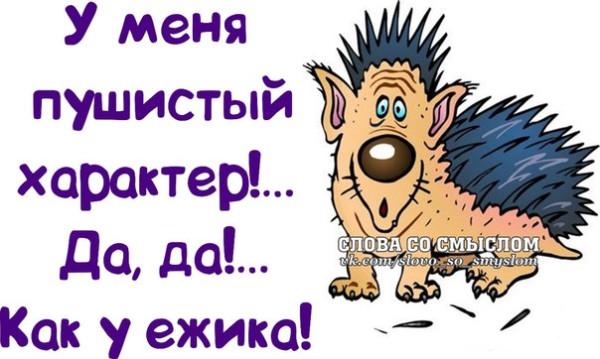 1390850066_frazochki-16