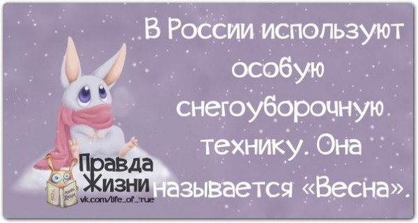 1390850067_frazochki-1