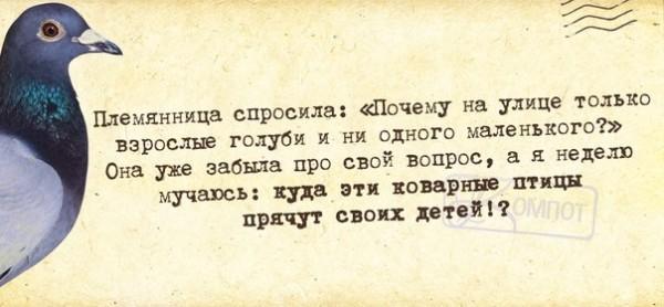 1390850073_frazochki-28