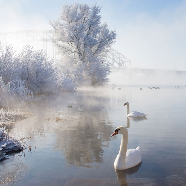 Gorgeous-Winter-Landscapes-17