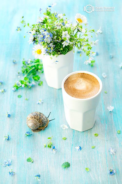 coffee_break_web_16_a.jpg