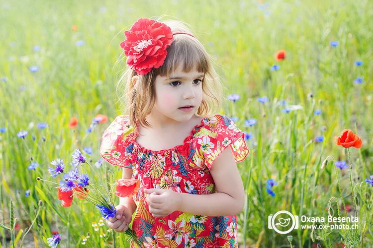 poppyfield_2015_web_2_a.jpg