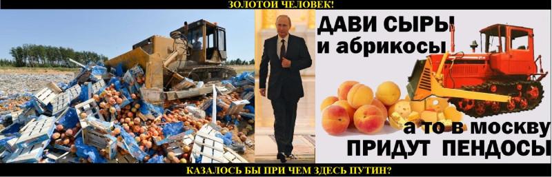 Антинародные продуктовые санкции.jpg