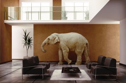 000013522689elephant-in-the-room