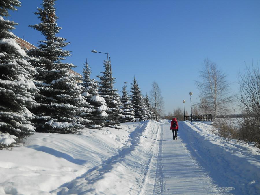 своего дела фото озерска челябинской области зимой удалению