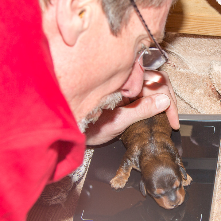 Galen with a Puppy on the Scale