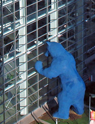 Blue Bear Seeking Entry into the Denver Convention Center