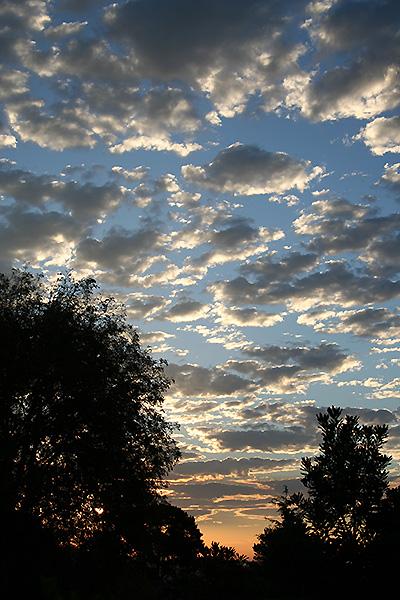 Noe Valley Sunrise