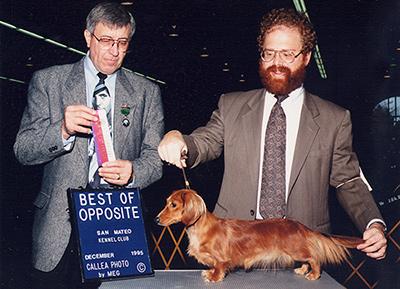Audit winning Best of Opposite Sex