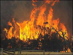 Fire in Australia