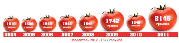 помидоры-чемпионы