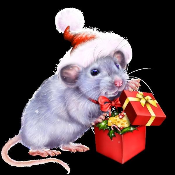 открытка мышка фото очень удобно