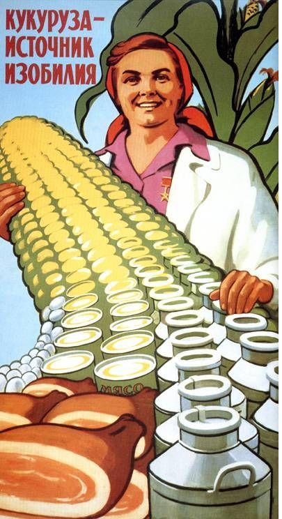 Плакат - кукуруза-