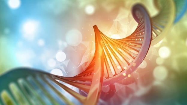 Наши вкусовые ощущения зависят от ДНК