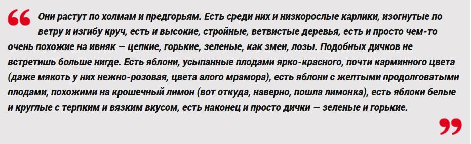Юрий Домбровский, «Хранитель древностей»