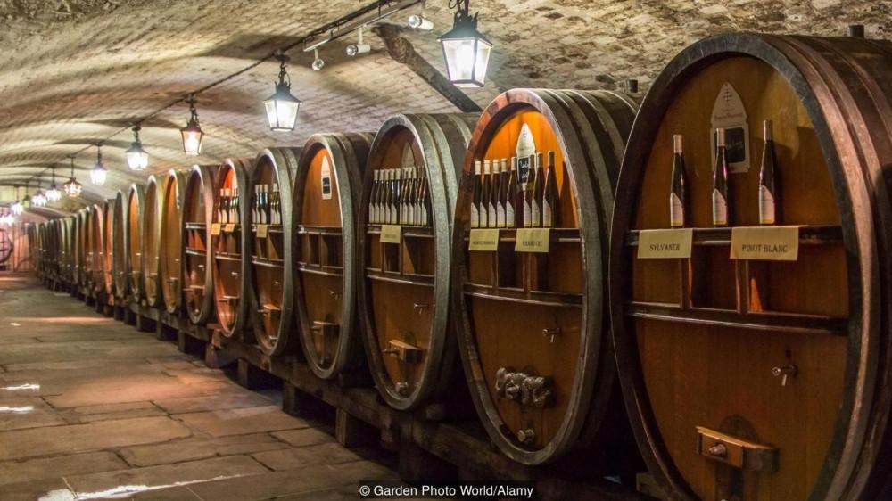 Здесь, в погребе Cave Historique des Hospices de Strasbourg производили и хранили вина, применяемые для лечения в больнице Hôpital civil