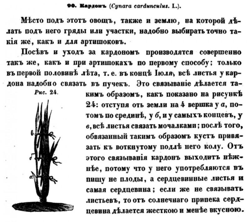 Львов Ефим Львович. Полное опытное русское огородничество. СПб., 1855.