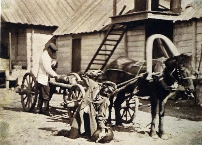 Казаки сносят арбузы. 1875-1876