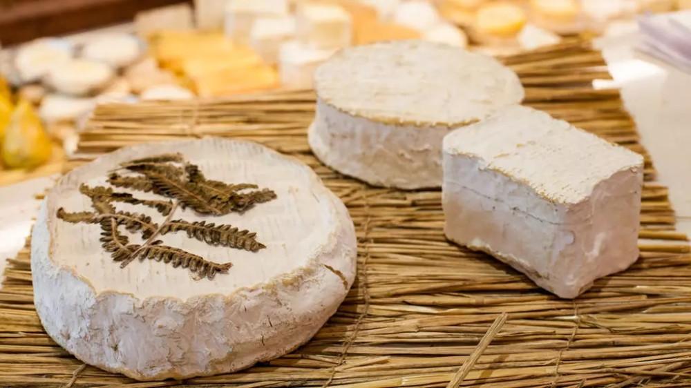 Некоторым сортам сыра бри уже более тысячи лет.